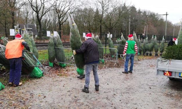 Eerste kerstbomen van IJsvereniging Tynaarlo verkocht