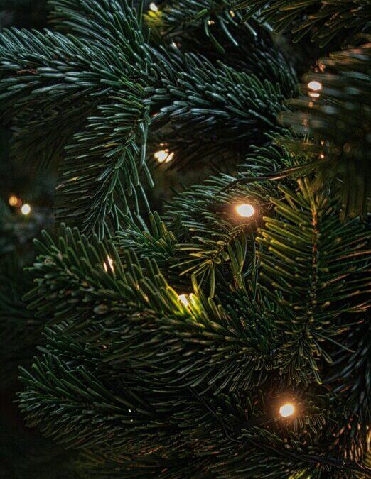 Kerstboom  versieren bij de dorpskerk.